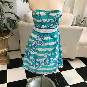 Stunning Lilly dress
